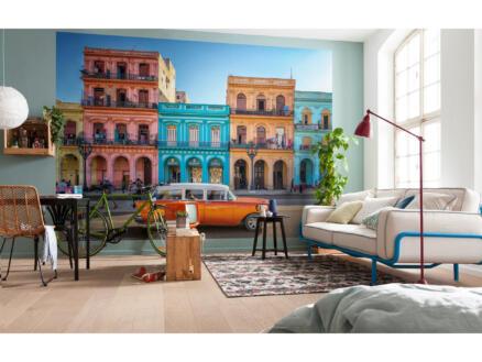 Havanna intissé photo 4 bandes