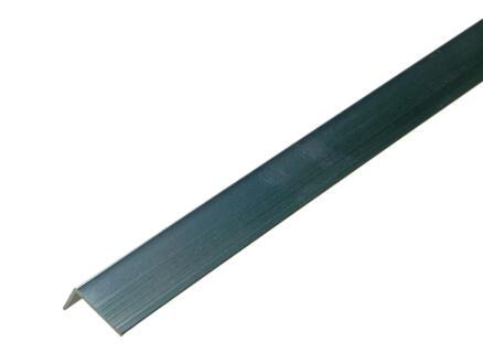 Arcansas Hoekprofiel 1m 20x10 mm geanodiseerd aluminium blinkend