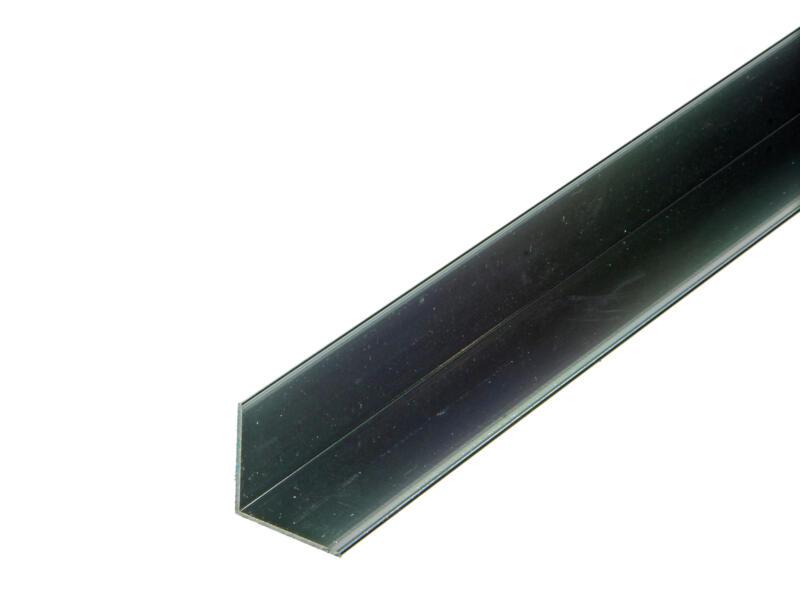 Arcansas Hoekprofiel 1m 25x25 mm geanodiseerd aluminium blinkend