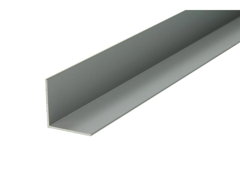 Arcansas Hoekprofiel 1m 25x25 mm geanodiseerd aluminium