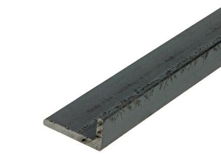 Arcansas Hoekprofiel 1m 40x20 mm staal