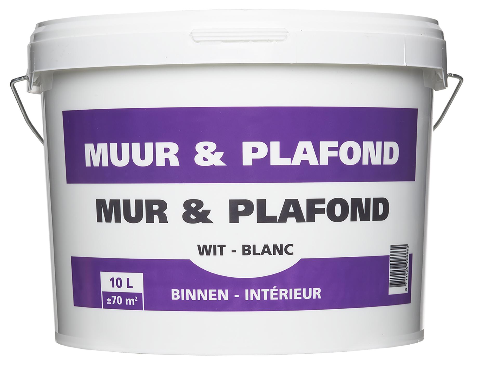 Hubo Peinture Mur Et Plafond 10l Blanc