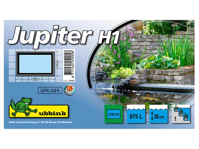 Jupiter H1 bassin de jardin 875l