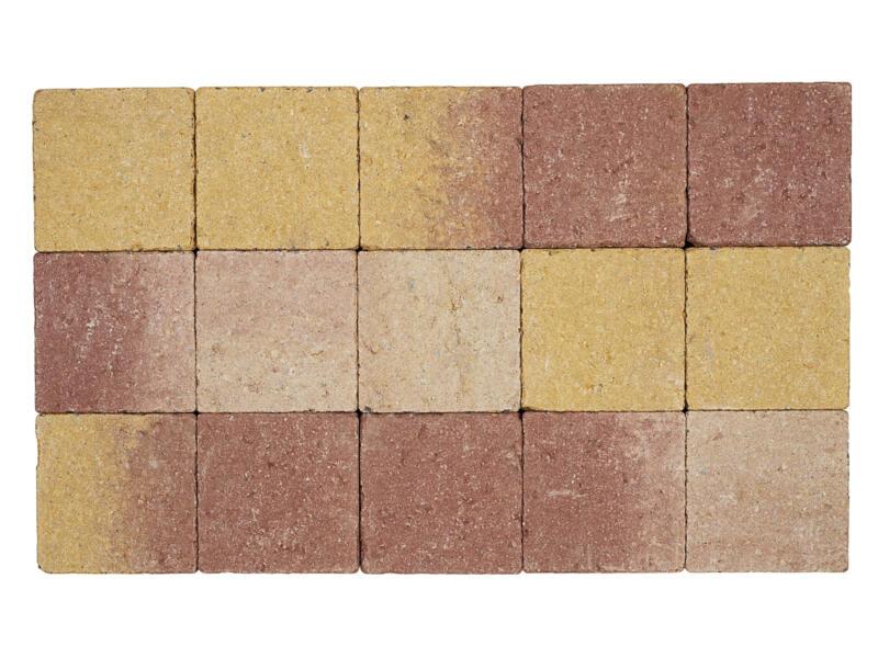 Klinkers in-line 15x15x6 cm brun-jaune