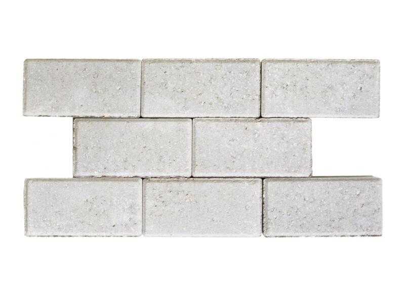 Klinkers niet-getrommeld 22x11x5 cm grijs