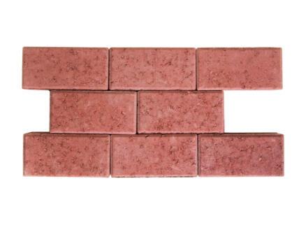 Klinkers niet-getrommeld 22x11x5 cm rood