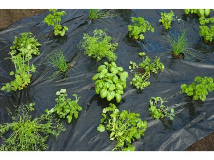 Kweekfolie tuinkruiden 5x0,95 m zwart
