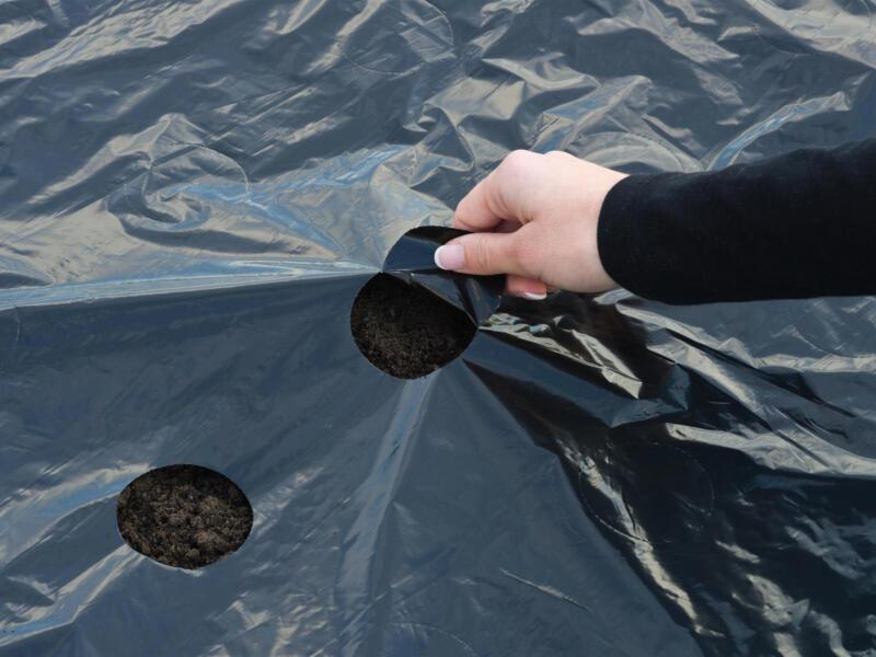 Kweekfolie universeel 5x0,95 m zwart