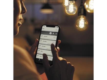 Philips Hue LED Edison-lamp filament donker glas E27 7W dimbaar