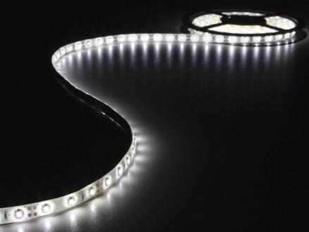 Vellight LED strip 15,7W 5m koud wit + voeding