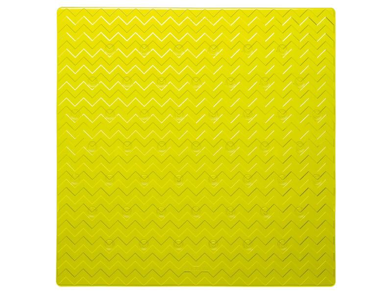 Sealskin Leisure tapis de douche antidérapant 53x53 cm vert