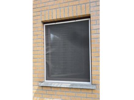 Confortex Louisiana moustiquaire de fenêtre 100x120 cm blanc