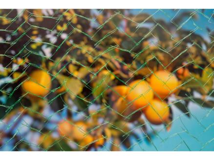Mono filet anti-oiseaux 10x2 m vert