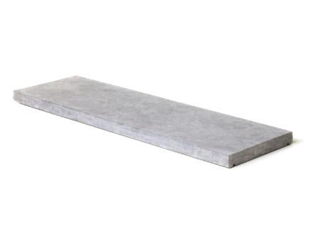 Muurdeksteen 100x35x4 cm blauwe hardsteen