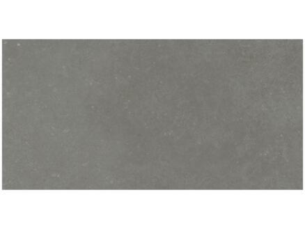 Namur carreau de sol 30x60 cm 0,90m² anthracite