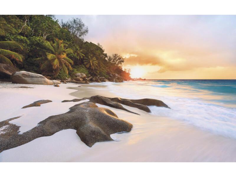 Nature intissé photo numérique 4 bandes