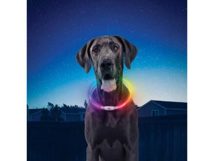 NiteHowl collier lumineux 64,77x0,84 cm multicolore rechargeable