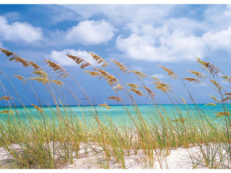 Ocean Breeze 8515 fotobehang 8 stroken