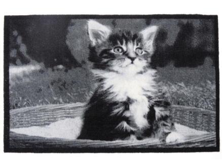 Paillasson déco chat 40x60 cm
