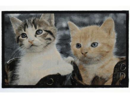 Paillasson déco chat 50x80 cm