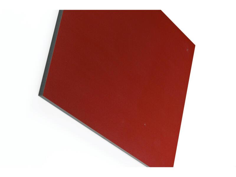 Panneau compact 305x130 cm 6mm bordeaux