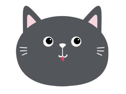 Finesse Placemat rond 38cm kat