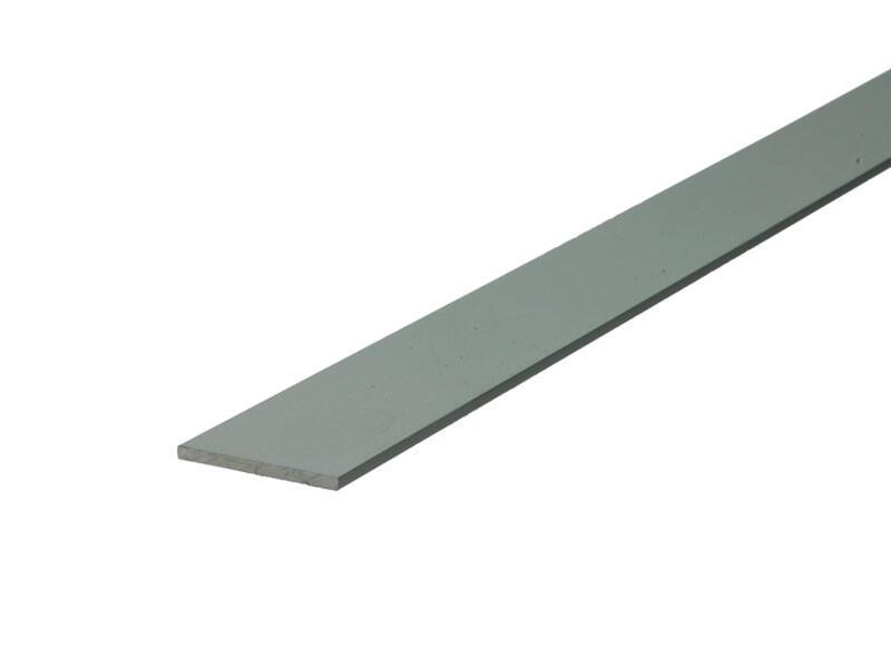 Arcansas Platprofiel 1m 25mm 2mm geanodiseerd aluminium mat