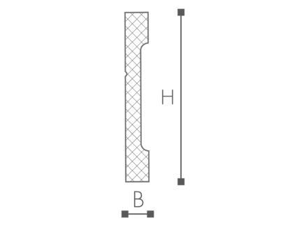 Plint C12 HDPS