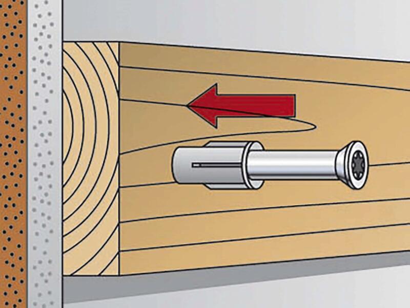 Fischer Plug met schroef FUR 10x100 TK