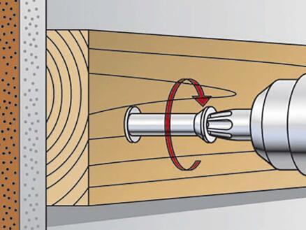 Fischer Plug met schroef FUR 10x160TK
