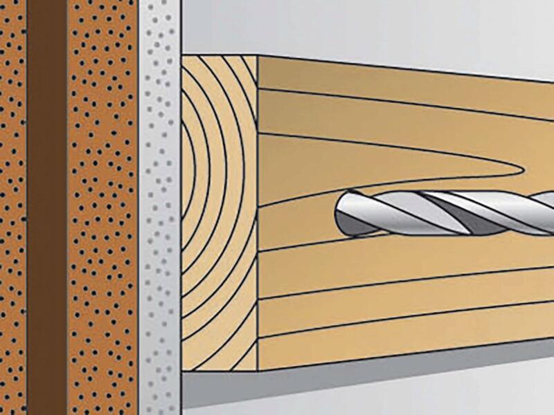 Fischer Plug met schroef FUR 10x80 TK