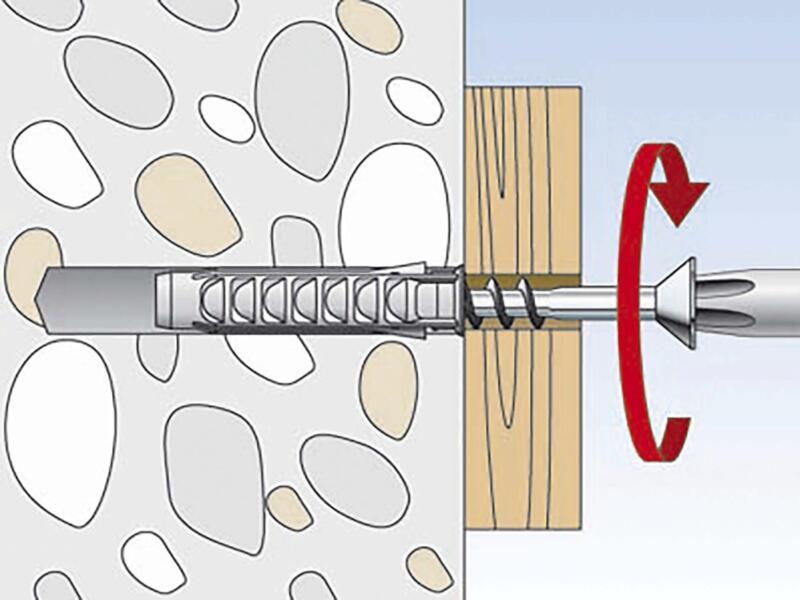 Fischer Plug met schroef SX 8 SK