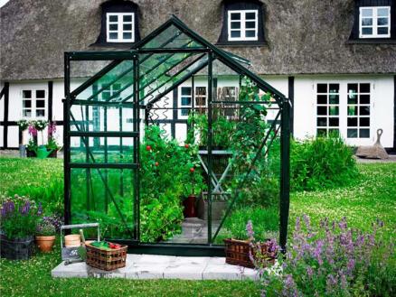 Halls Popular 106 serre verre horticole vert