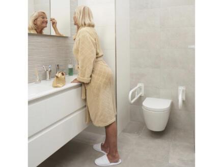 Porte-papier toilette pour barre d'appui WC blanc