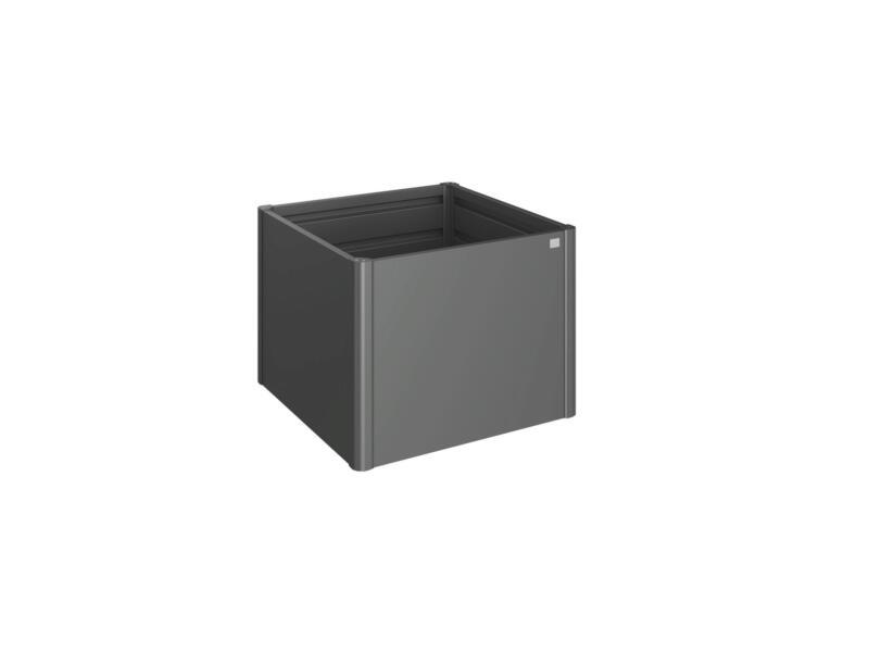 Biohort Potager Surélevé carré potager 100x100 cm gris foncé métallique