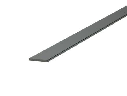 Arcansas Profil plat 2m 20mm 2mm aluminium brillant anodisé