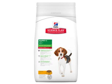 Hill's Puppy Healthy Development Medium Breed hondenvoer chicken 12kg