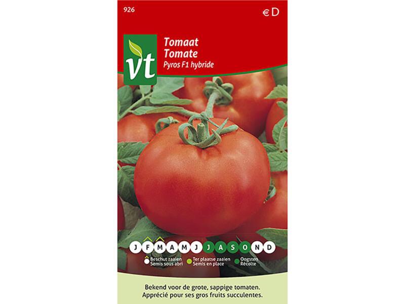 Pyros F1 Hybride tomaat