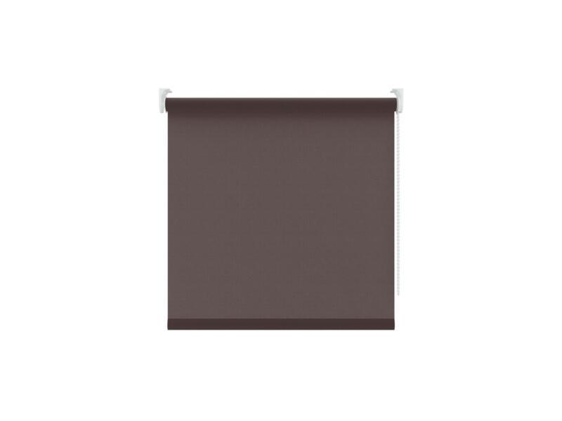 Decosol Rolgordijn lichtdoorlatend 210x190 cm bruin