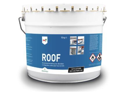 Roof waterdichte dakherstelling 10kg