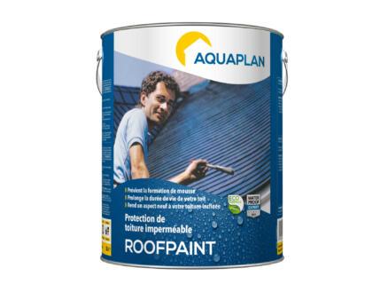 Aquaplan Roofpaint 5l anthraciet