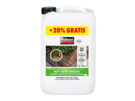 Rubson Rubson nettoyant dépôts verts 10%+20%