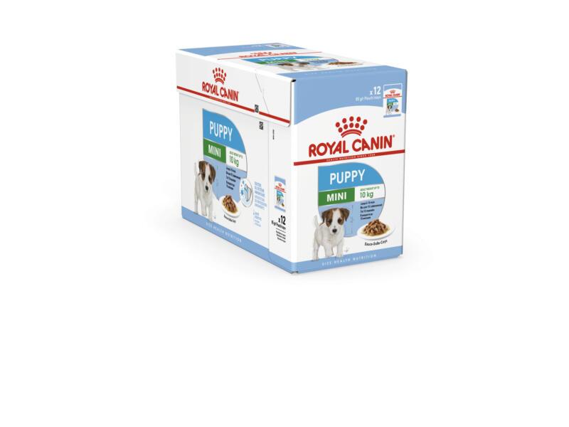 Royal Canin SHN Mini Puppy hondenvoer 85g 12 stuks