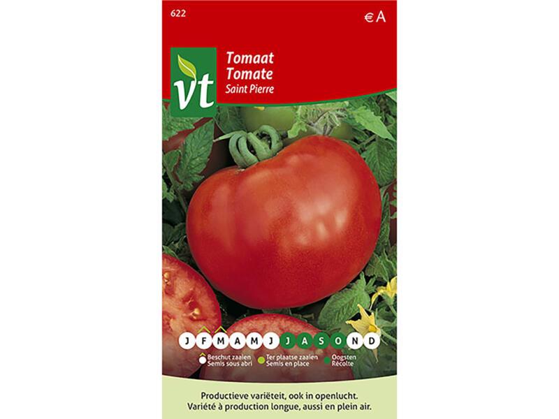 Saint Pierre tomaat