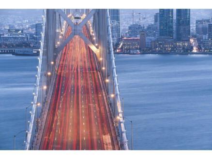 Komar San Francisco Blues digitaal fotobehang vlies 3 stroken