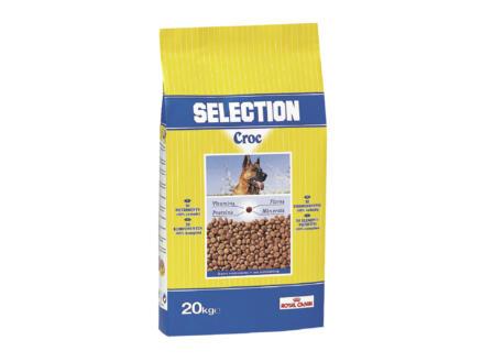 Royal Canin Selection Croc croquettes chien 20kg