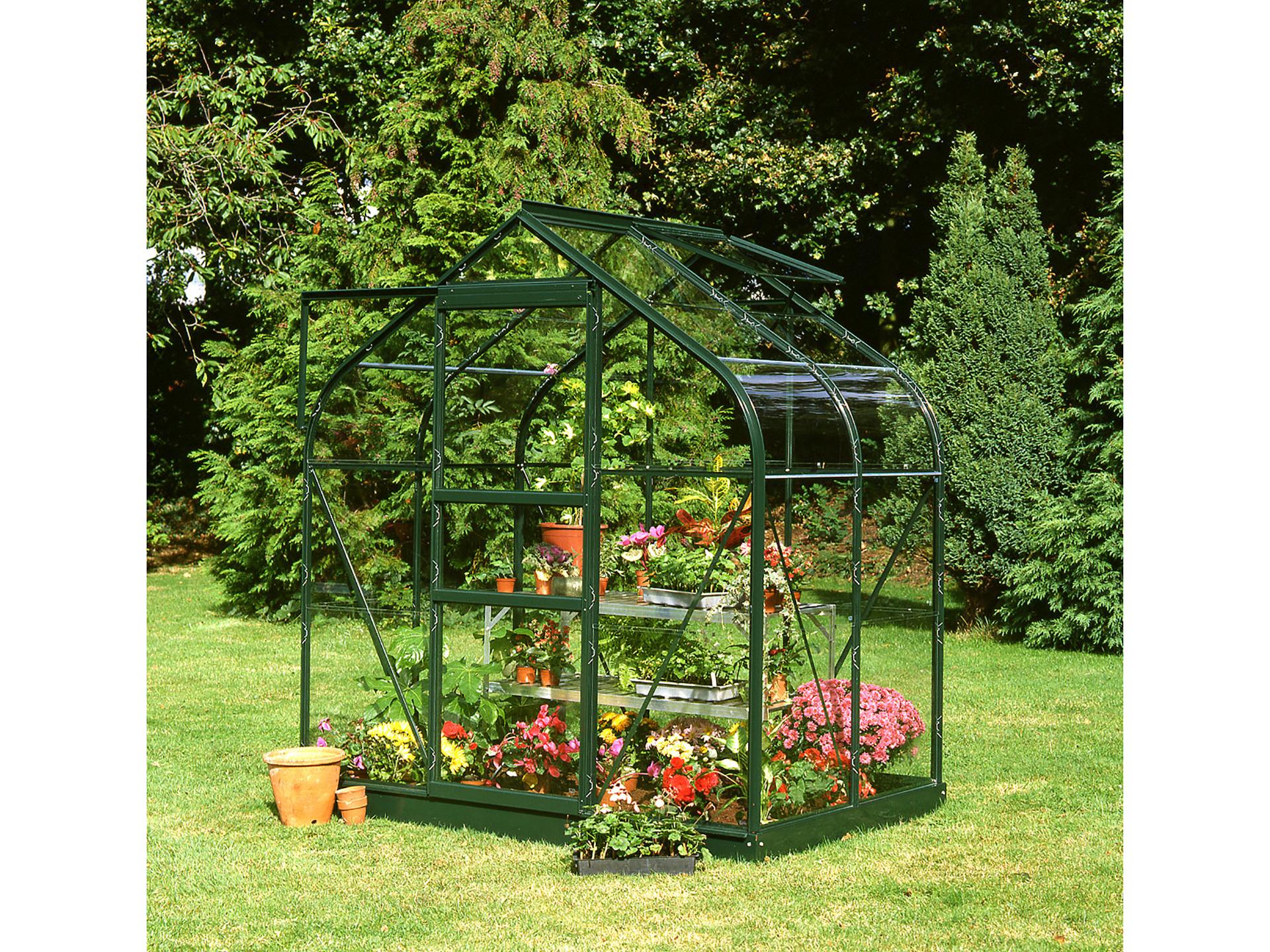 Royal well Serre de jardin Supreme 46 vert avec verre de sécurité