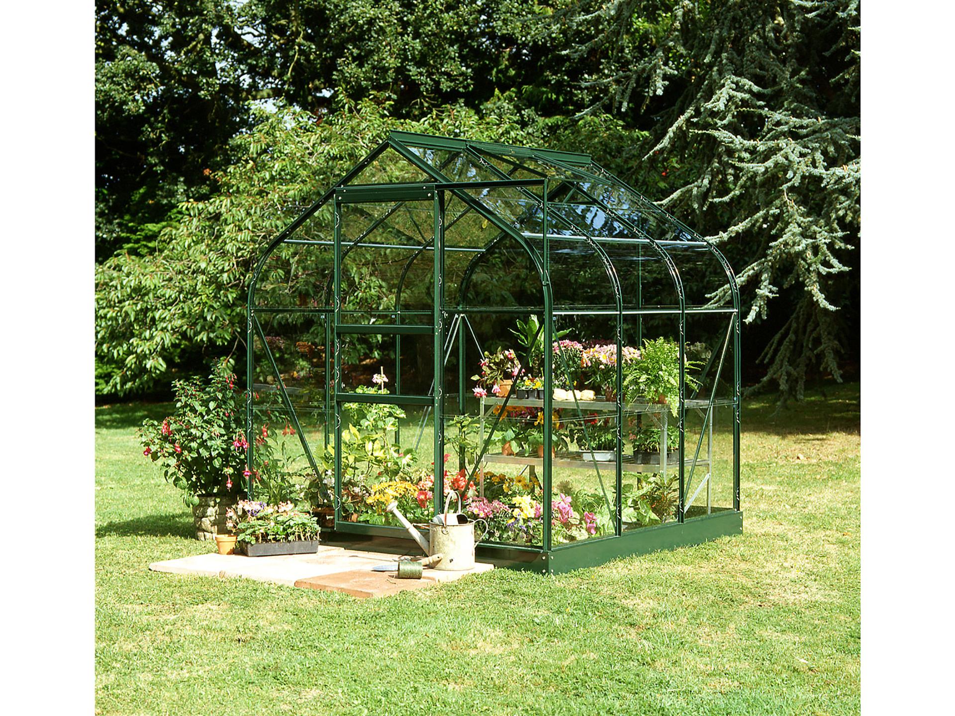 Royal well Serre de jardin Supreme 66 vert avec verre horticole