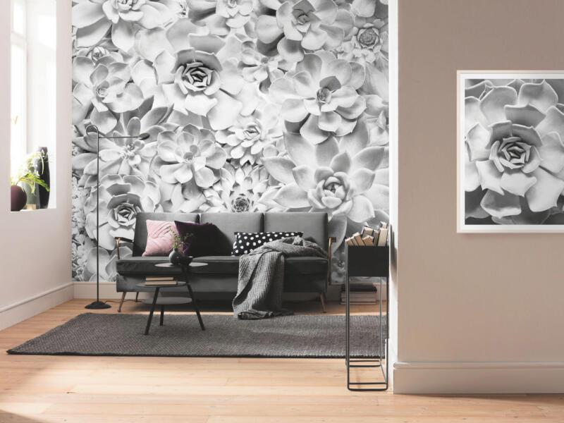Shades Black & White intissé photo numérique 4 bandes