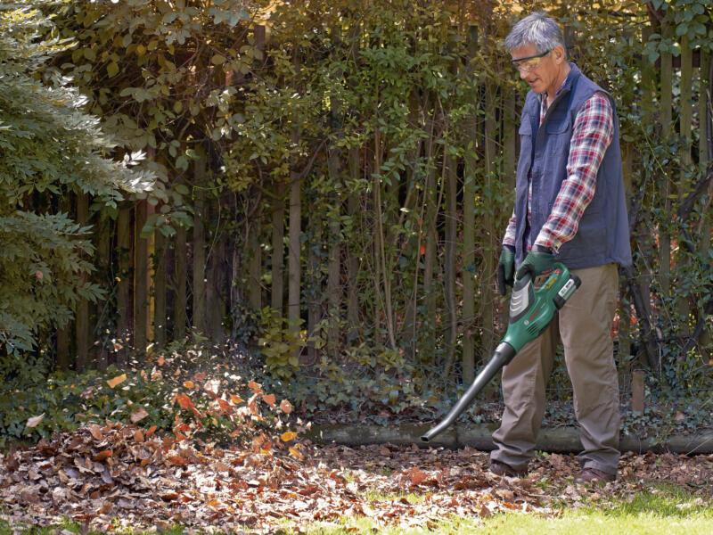 Bosch Souffleur de feuilles sans fil ALB 36 LI